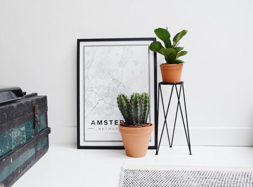 planten en lijst mapiful
